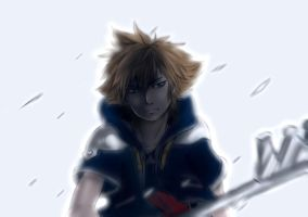 Sora by v0idless