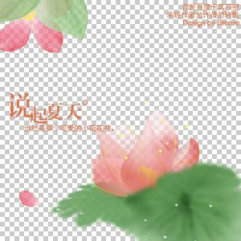 flower_lotus_png_6p by SunnydaySunshine
