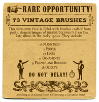 Brushes 19: Vintage Ornaments by flowersong