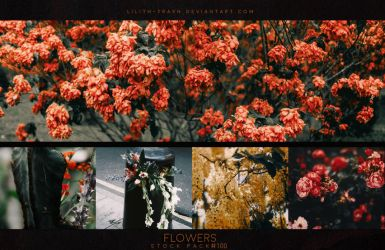 Flowers ( Stock Pack ) by LilithDemoness