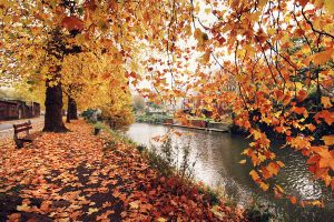 Fall in Ghent by DarkCrissus
