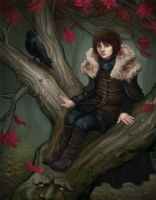 Bran the Broken by Krikin