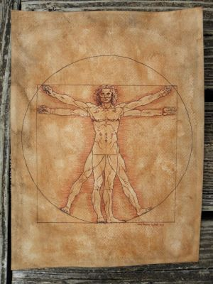 Vitruvian Man Study - Commission by Orchid-Black