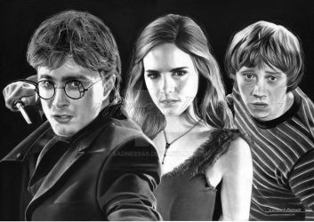 Harry, Hermione et Ron by Sadness40