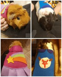 Guinea Pig Halloween Costumes by DrownedTrying