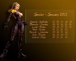 January - Janvier 2011 by Jagouille