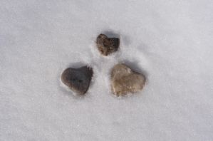 Heart Stones in Snow - Love by angelstar22
