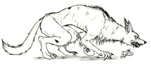 Sketch - werewolf by Absolute-Sero