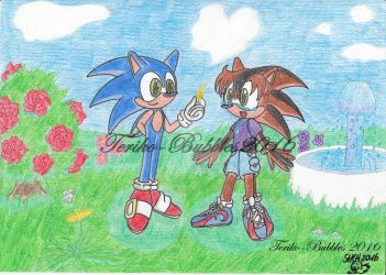Will you marry me Sonic and Teriko (No. 1) by Teriko-Bubbles