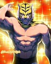 Tiger Mask W by theCHAMBA