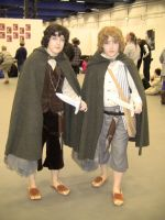 Frodo and Sam by EgonEagle