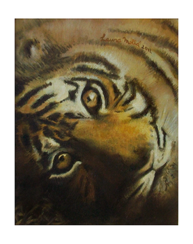 Tigre by laurart