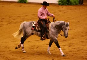 Cantering 27 by SoloPianoStock