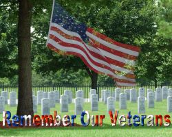 Remember Our Veterans by LoloAlien