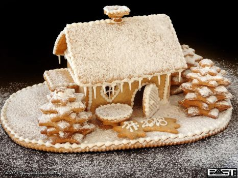 Gingerbread cottage by PaSt1978