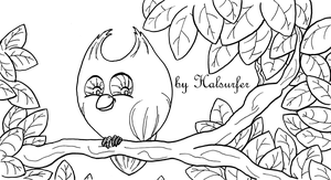 Owly BW by HALsurfer