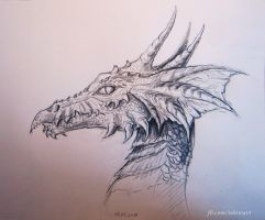 Dragon's Head by Ishtir