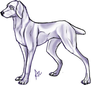 Free Dog pose by MooiLeven