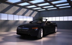 BMW SERIES 6 by sayeh-roshan