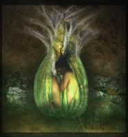 Four Elements - Earth by judith
