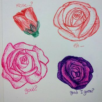 Rose Sketches [Valentine's Day~] by TheOrangeDaisy