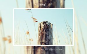 Springlight by kirill0v