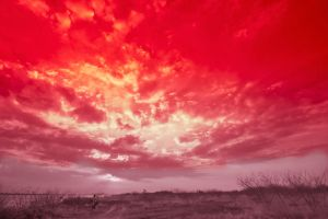 The Red Imagination by heavenland