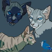 Jayfeather thoughts by Alex-Harrier
