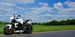Street Triple in nature 1 by MotoYoshi