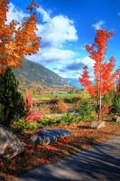 Lakeside in the Fall by GerryTen