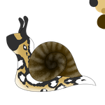 Hatched egg: African Wild Snail. by Sol-AstroRey