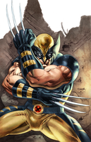 Wolverine by Stephen Segovia by Mirthrynn