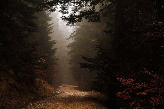 Pathway To Nowhere by ZeSly