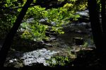 Shadows Over the Stream - 2013 by insanity-pillz
