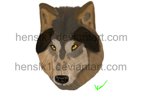 Realistic Wolf? by henslk1