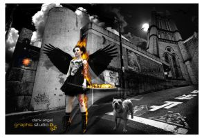 Dark angel by studiographis