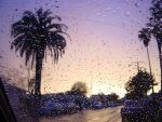 Rain drops on Windsheild by doncroswhite