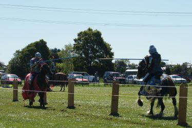 In the List. JOUSTING by scratzilla