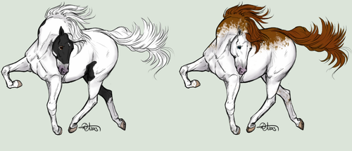 Two horse adopts by LifeAsRose