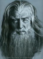 Gandalf by Cynthia-Blair