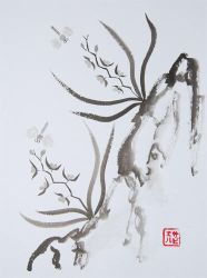 Sumi-e Orchids by xtolord