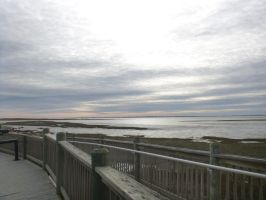 Toms Cove February by usedbooks