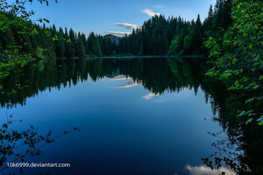 Lake in the woods by 10k6999