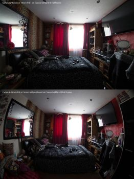 Samyang Rokinon 14mm vs Canon 8-15mm at 14mm 5dmk3 by TMProjection