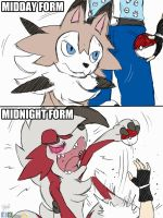 Back to the Pokeball by Winick-Lim