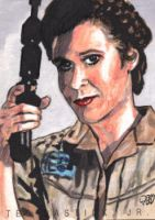 Princess Leia PSC by tdastick
