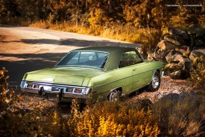 Green Dodge by AmericanMuscle