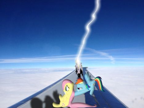 Ponies On a plane wing by Meshla