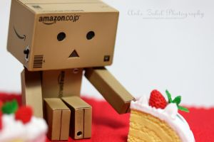Picnic with Danbo by ZabelPhotography