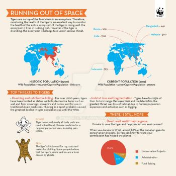 Infographic about Tiger Extinction by Ihtaver